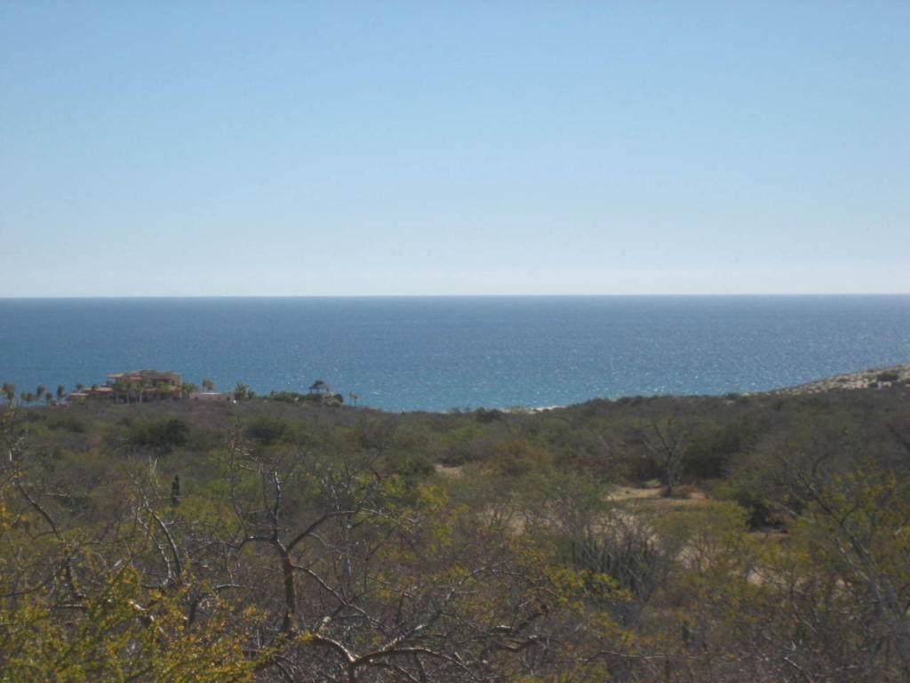 Coast Road Cabo Pulmo - Photo 1