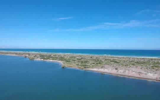 Lot 42 Hwy La Paz-Sn.Juan De La Costa, La Paz, BS  (MLS #20-2994) :: Own In Cabo Real Estate