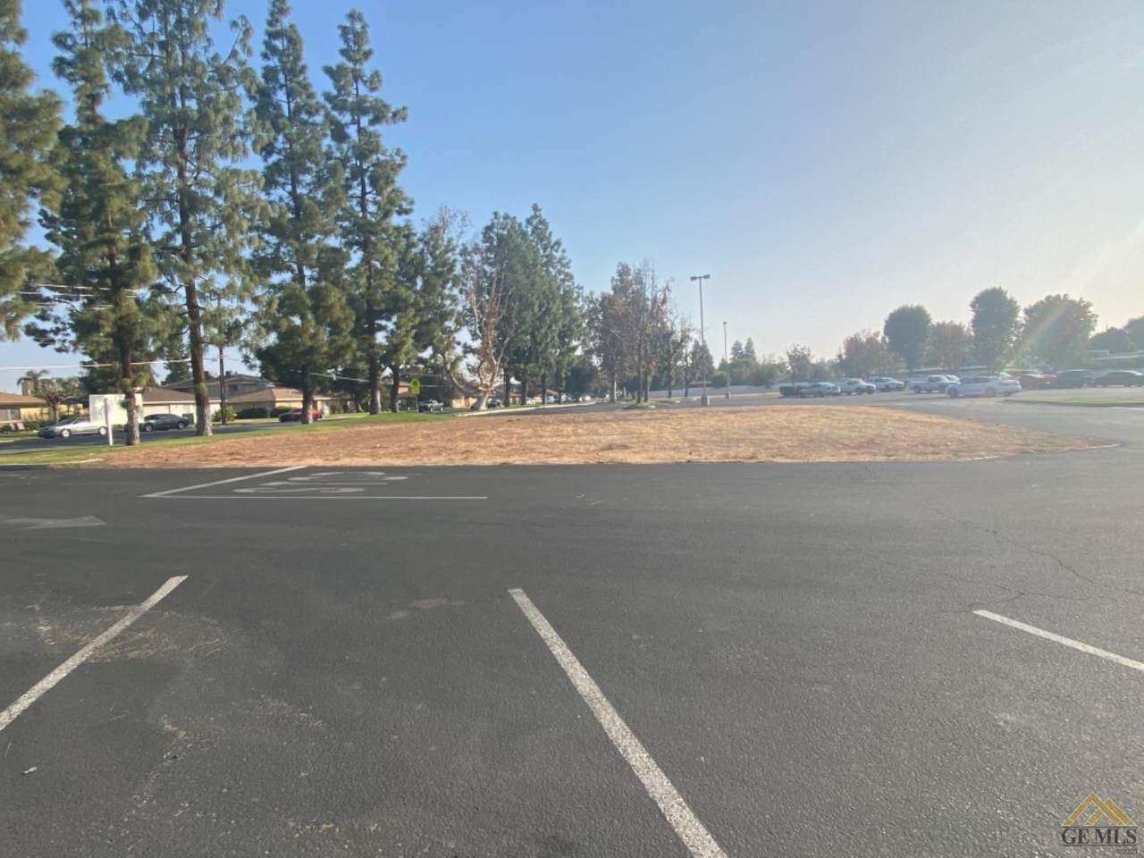 4751 Planz Road - Photo 1