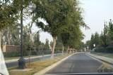 304 Tiffany Drive - Photo 27