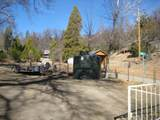 45008 Forest Drive - Photo 15