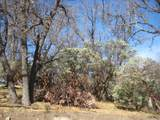 45008 Forest Drive - Photo 22