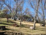 45008 Forest Drive - Photo 23