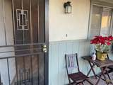 507 Tulip Street - Photo 4