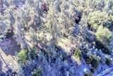 13617 Yellowstone Drive - Photo 10