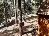 48701 Sugarpine Trail - Photo 13
