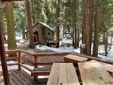 48701 Sugarpine Trail - Photo 14