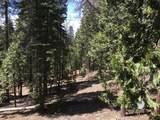 48701 Sugarpine Trail - Photo 15