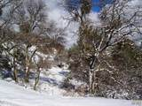 3 Bear Mountain Road - Photo 22
