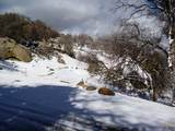 3 Bear Mountain Road - Photo 23