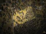 0 Saint Moritz Drive - Photo 1