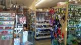 11317 Kernville Road - Photo 5