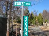 45008 Forest Drive - Photo 2
