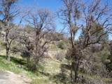3 Bear Mountain Road - Photo 9