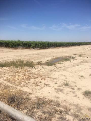 0 Freeborn Road, Buttonwillow, CA 93206 (#202002790) :: HomeStead Real Estate