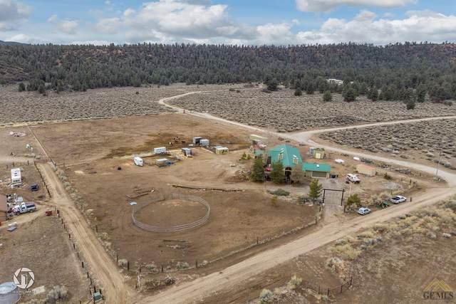 16150 E Mountain Lilac Trail, Frazier Park, CA 93225 (#202003005) :: HomeStead Real Estate