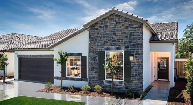 9403 Holley Ridge Lane, Shafter, CA 93263 (#202003270) :: HomeStead Real Estate