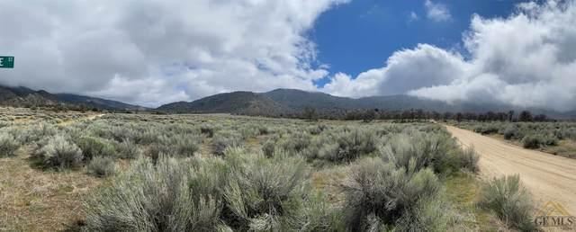 0 Redstone, Caliente, CA 93518 (#202003336) :: HomeStead Real Estate