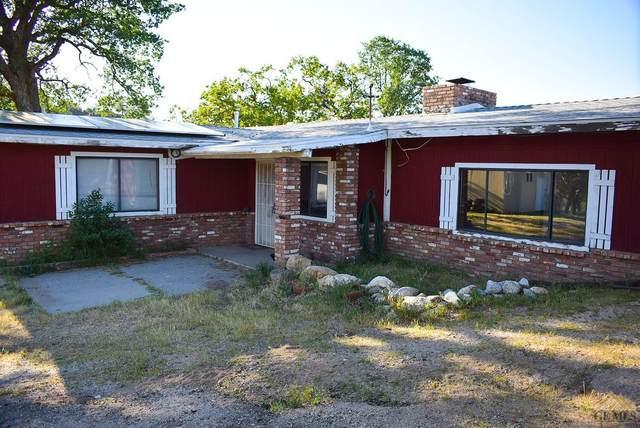 32002 Woodford Tehachapi Road, Keene, CA 93531 (#202003753) :: HomeStead Real Estate
