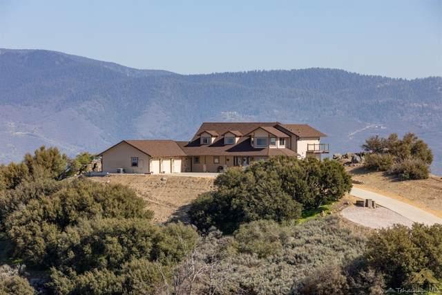 23480 El Rancho Drive, Tehachapi, CA 93561 (#202004577) :: HomeStead Real Estate