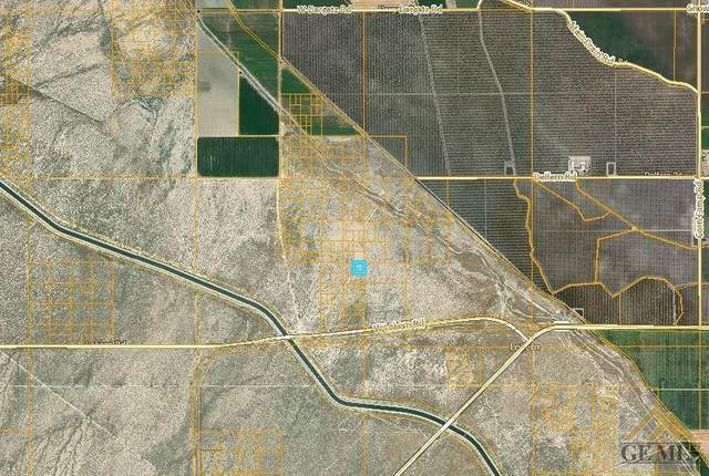 0 W Lokern, Buttonwillow, CA 93206 (#202004616) :: HomeStead Real Estate