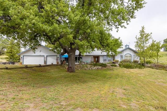 29701 Poso Court, Tehachapi, CA 93561 (#202004665) :: HomeStead Real Estate