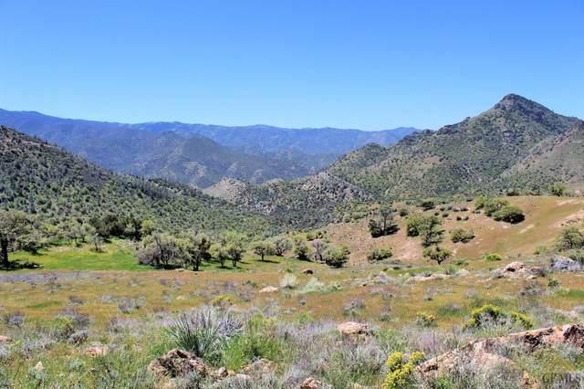 0 High Ridge, Caliente, CA 93518 (#202004800) :: HomeStead Real Estate