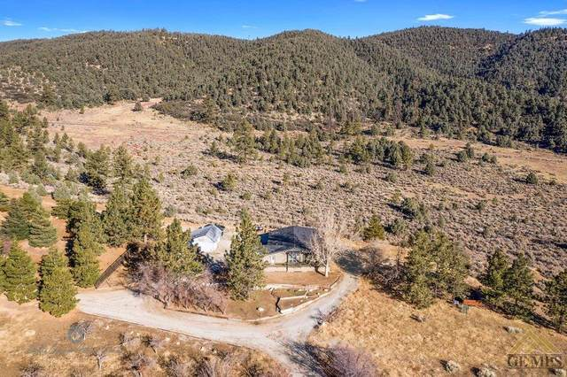 1956 Julien Lane, Frazier Park, CA 93225 (#202004857) :: HomeStead Real Estate