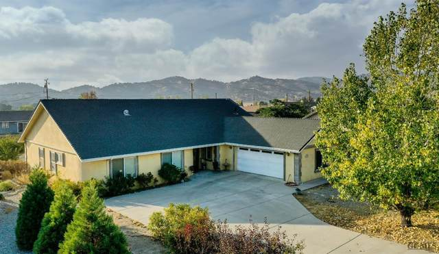 18301 Ghost Town Street, Tehachapi, CA 93561 (#202010618) :: HomeStead Real Estate