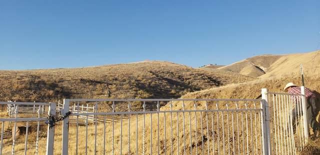 18410 Breckenridge Road, Bakersfield, CA 93306 (#202101158) :: HomeStead Real Estate