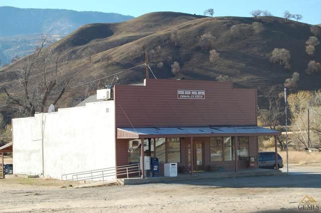 27750 Caliente Bodfish Road, Caliente, CA 93518 (#202101189) :: HomeStead Real Estate