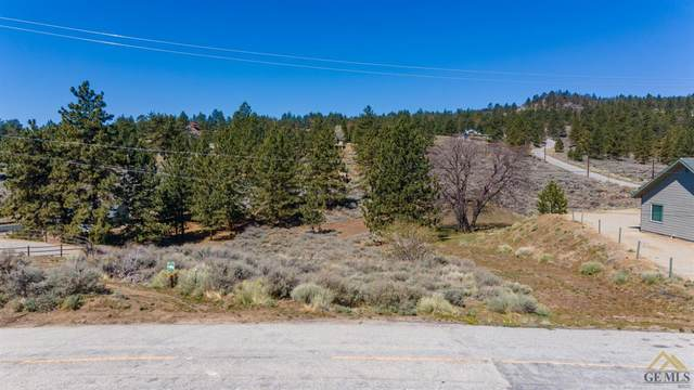 25641 Territory Way, Tehachapi, CA 93561 (#202104225) :: HomeStead Real Estate