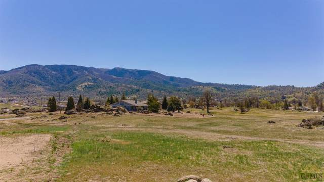 0 Medinah Court, Tehachapi, CA 93561 (#202104226) :: HomeStead Real Estate