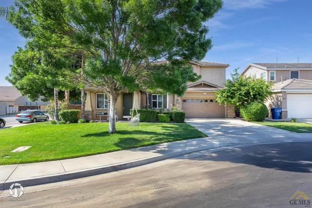 12201 Marigold Drive, Bakersfield, CA 93311 (#202105159) :: HomeStead Real Estate