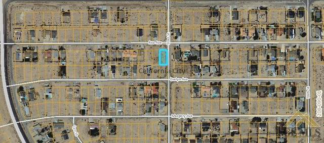 0 Rea Avenue, Calif City, CA 93505 (#202108052) :: MV & Associates Real Estate