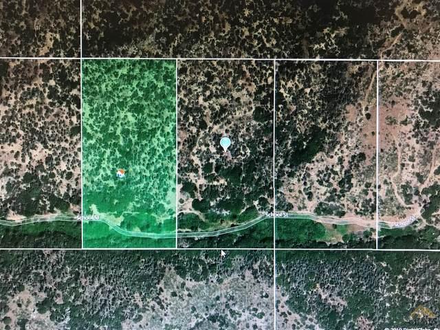 0 Vacant Land, Havilah, CA 93518 (#202111151) :: MV & Associates Real Estate