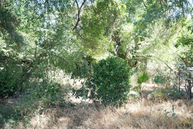 1024 Planz Road, Bakersfield, CA 93304 (MLS #21708980) :: MM and Associates