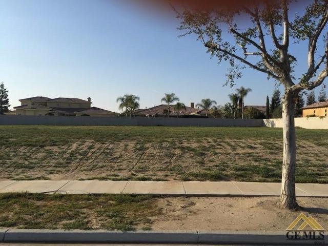 2207 Brighton Park Drive, Bakersfield, CA 93311 (MLS #21712142) :: MM and Associates