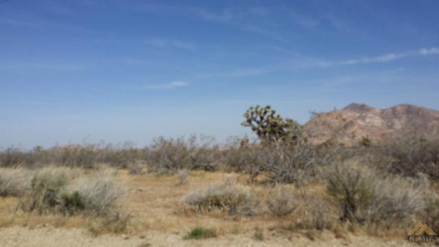 0 Geissler Ave, Mojave, CA 93501 (MLS #21714115) :: MM and Associates