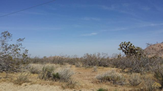 0 Miller Ave, Mojave, CA 93501 (MLS #21714127) :: MM and Associates