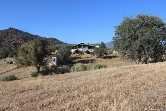 13647 Paradise Valley Road, Caliente, CA 93518 (#21903398) :: Infinity Real Estate Services