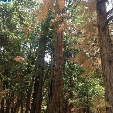 80 Cedar Slope, Sequoia Natl Park, CA 93265 (#21903624) :: Infinity Real Estate Services