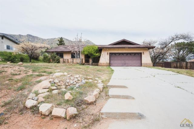 2913 Lynx Drive, Lake Isabella, CA 93240 (#21904256) :: Infinity Real Estate Services