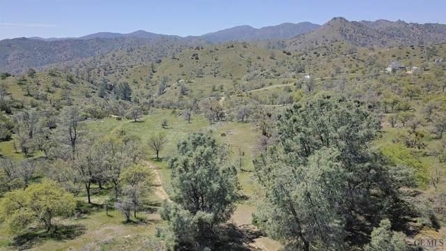 0 Shanks Rd, Caliente, CA 93518 (#202004052) :: HomeStead Real Estate