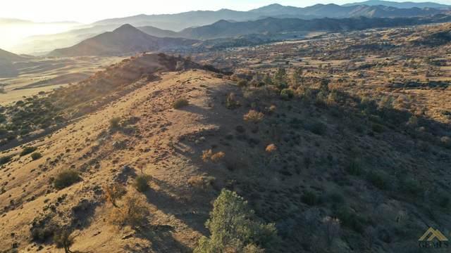 0 Michael William, Caliente, CA 93518 (#202100080) :: HomeStead Real Estate