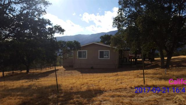 42101 Glen Oak Road, Caliente, CA 93518 (MLS #21711639) :: MM and Associates