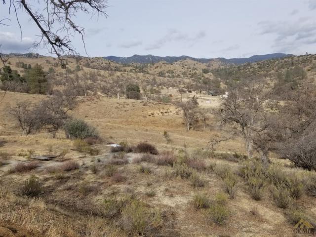 9993 Caliente Creek Road, Caliente, CA 93518 (MLS #21803033) :: MM and Associates