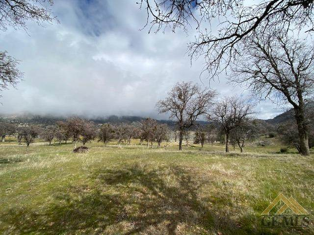 39992 Annjeanette, Caliente, CA 93518 (#202003283) :: HomeStead Real Estate