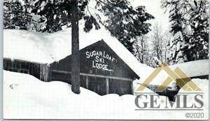 0 47782 Sugarloaf Drive - Photo 1