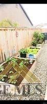 9215 Oak Garden Lane - Photo 23